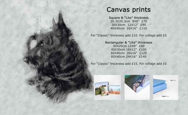 canvas-prices