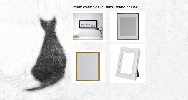 frame-examples