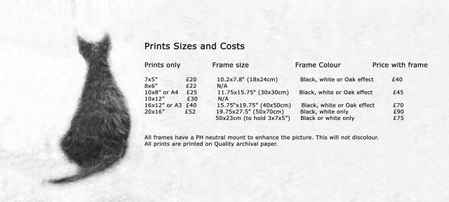 prints-frames